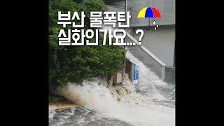 물폭탄 맞은 오늘의 부산, 모아보기.avi