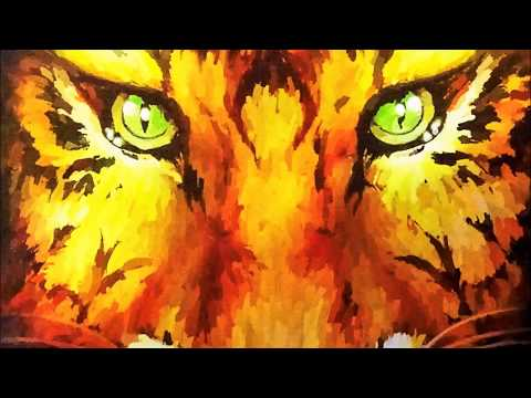 Tigres del Norte -