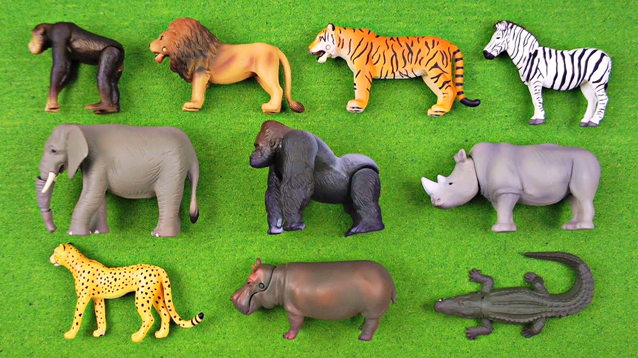 Learning Animal Names Fun Facts 1 African Animals
