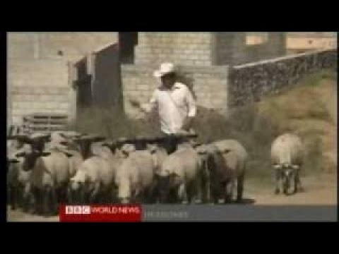 Latin Americas Economic Boom Explained 2 of 2 BBC News and Documentary