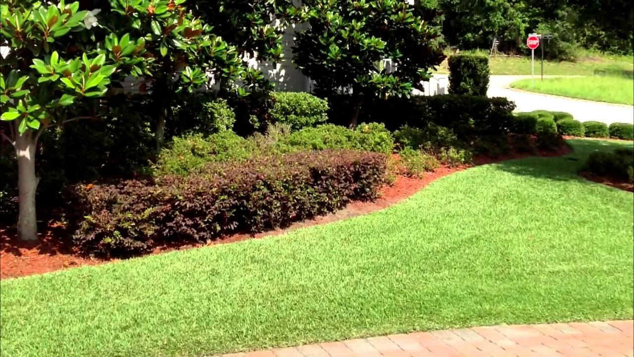 the other side lawn u0026 ornamental pest control inc tree u0026 shrub