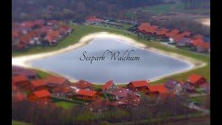Seepark Walchum - Impressionen im Dezember