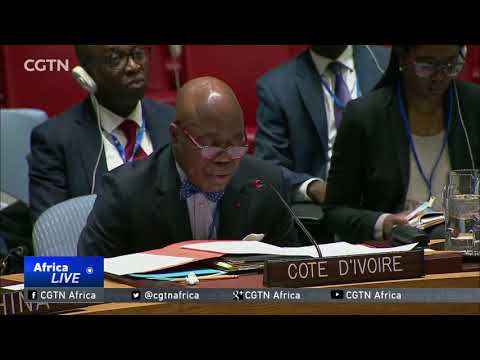 UN Security Council urged to focus on militancy in Africa