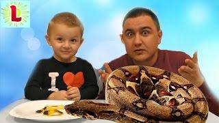 обычная еда против мармелада челлендж real food vs gummy food candy challenge bad baby