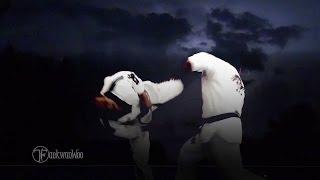 ★ 4 Proper Steps of Complete Taekwondo Spinning Hook Kick 후려차기