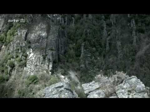 L' Espangne Sauvage  Les Ours Des Cantabriques 1080p by arte HD