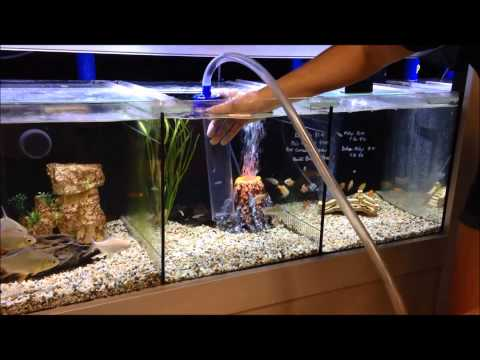 Connect two fish tanks alternative fill method diy aqua for Connecting fish tanks