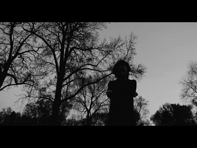 Ashton Nyte - Waiting For A Voice (Official Video)
