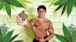 Bodybuilder VS Weed Brownie Experiment *EXTREMELY POTENT* | Crazy Marijuana Edible Eating Test