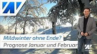 Mildkeule bis ins neue Jahr! Die Wetterprognose für Januar und Februar!