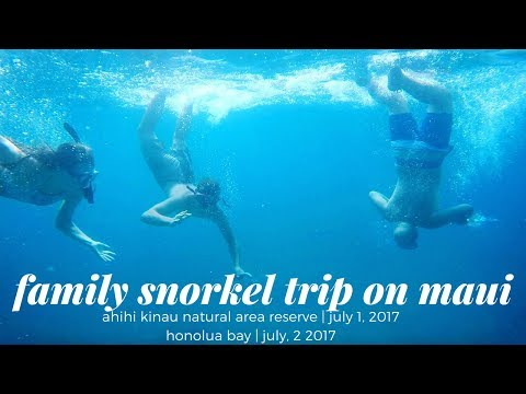 FAMILY SNORKEL TRIP ON MAUI: HONOLUA BAY + AHIHI-KINAU RESERVE