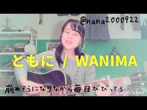 ともに / WANIMA 【弾き語り】【女子高校生】