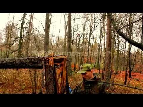 Mein Video Kienholz