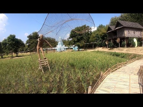Agriculture Farming - Thailand Travel