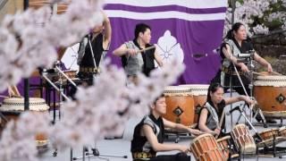強くしなやかな桜🌸 韮崎工業高等学校太鼓部