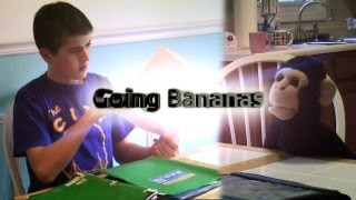 Going Bananas Episode 2: Monkey's work