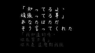 很喜歡這首歌,認真的配著字幕聽歌時眼淚就掉下來了.