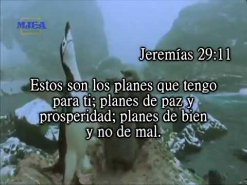 Jeremías 29;11 - YouTube