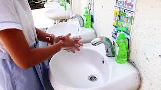 Publication Date: 2020-07-23 | Video Title: 惇裕學校 - 齊心抗疫之洗手步驟