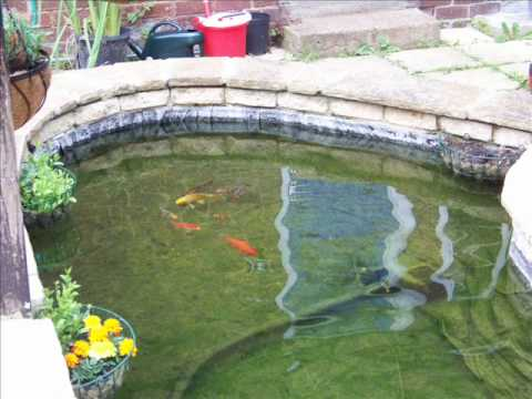 How to build a garden fish pond update youtube for Large outdoor fish ponds