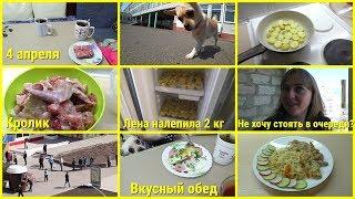 Влог, 4 апреля, Ночью в магазин, Вкусный обед, Лена налепила 2 кг пельменей, Кролик на ужин