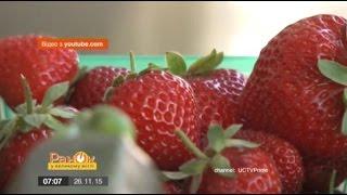 видео: Правда о ГМО, которая вас удивит