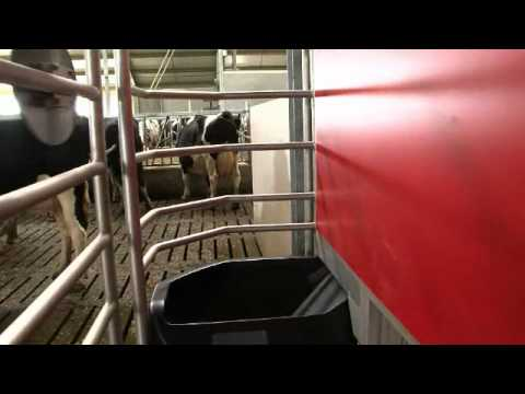 Lely Astronaut A4 - Benefits cow (English)