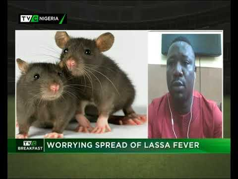 TVC Breakfast Feb 6th 2018 | Worrying spread of Lassa Fever