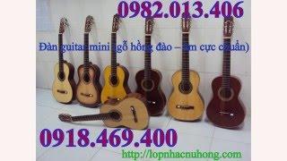 Bán đàn guitar nhỏ cho trẻ em tại nhạc cụ nụ hồng