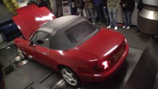 Howard's Supercharged Mazda MX5 @ OCUK Rolling Road Day 10 @ Powerstation