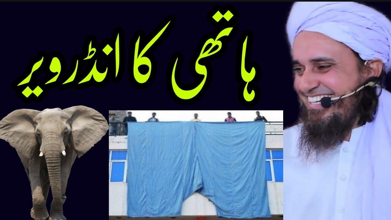 hathi (elephant ) ka underwear | #Shorts | Mufti Tariq Masood | @Islamic YouTube
