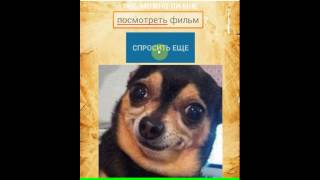 Ask Dog / Спроси пса | Android | TanoApps