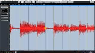 CUBASE 9.5 - 12 серия - Audio Warp
