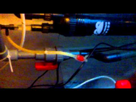With Algae Scrubber Sump On Freshwater Fish Tank Mp4 Full Online