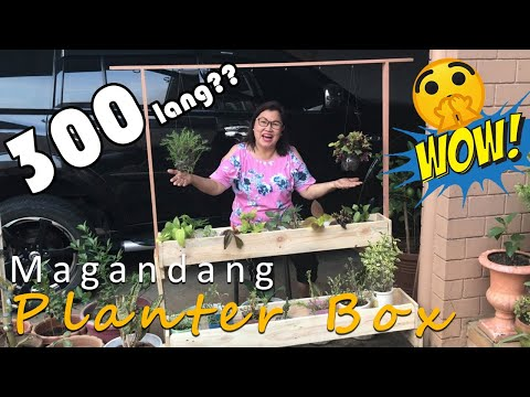 how-to-build-a-planter-box-with-hanging-planter/diy-easy-and-cheap
