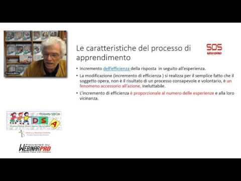 1) Neuroscienze e scuola (Giacomo Stella, UniMore)