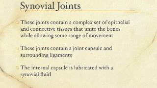 Articulation Lecture 1 - Types of Joints
