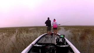 Gambler Flapp'n Shad Topwater Action