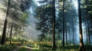 VIS Meteori - U gori raste zelen bor