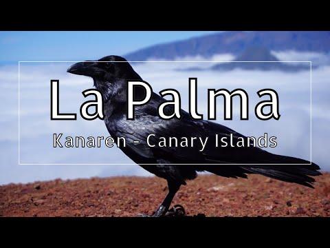 La Palma 2018 - Caldera de Taburiente - Barranco de Madera - Roque de los Muchachos - Sony A6000