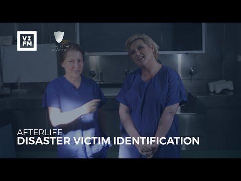 Afterlife - Disaster Victim Identification