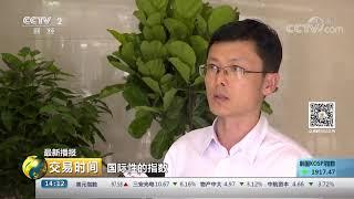 《交易时间(下午版)》 20190806  CCTV财经