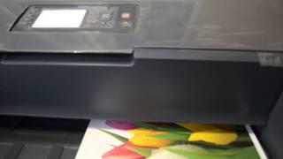 видео Профессиональные, ФОТО для Принтера HP