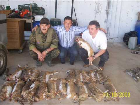 Fotos de caza en toledo.