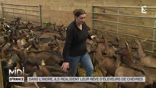 LE FEUILLETON : Dans l'Indre, ils réalisent leur rêve d'éleveurs de chèvres
