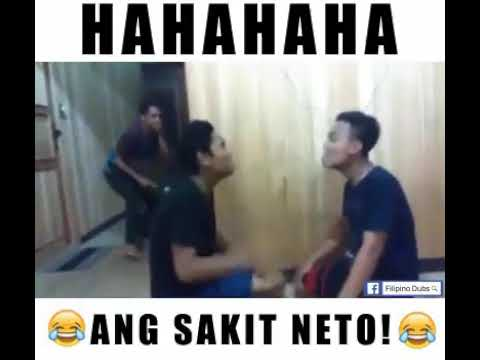 |Funny Video|