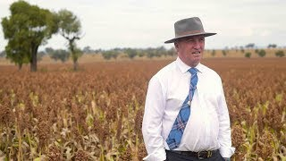 Australian Deputy PM to resign over extramarital affair