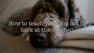 How To Teach Your Dog Not To Bark At The Doorbell