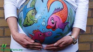 Měly by ženy veganky užívat DHA během těhotenství?
