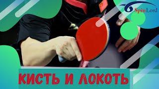 Кисть и локоть в настольном теннисе